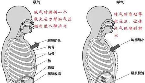 慢阻肺(COPD)患者使用家用呼吸机的好处